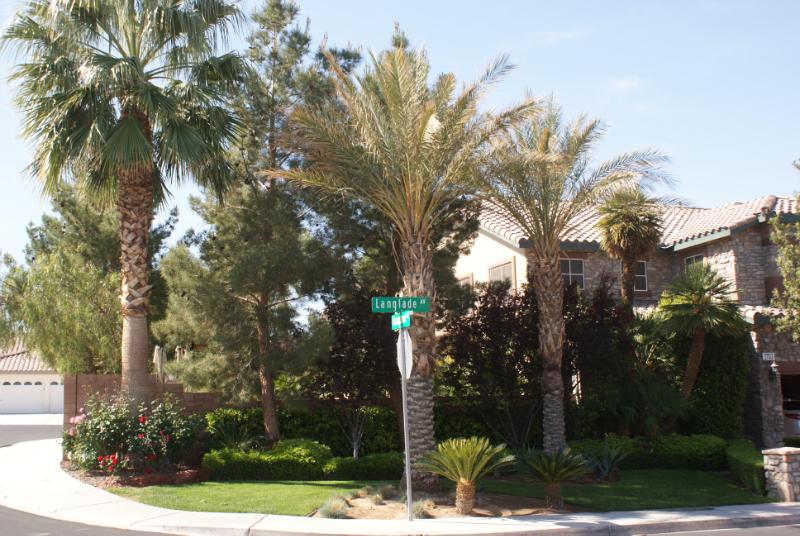 Las Vegas landscape company