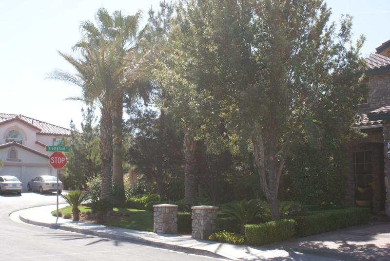 Las Vegas plants
