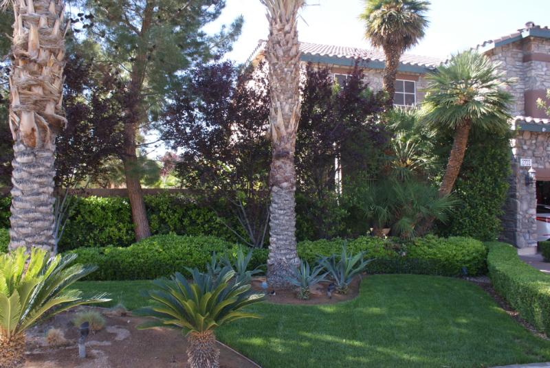 Las Vegas lawn maintenance
