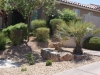 Las Vegas homes landscapes