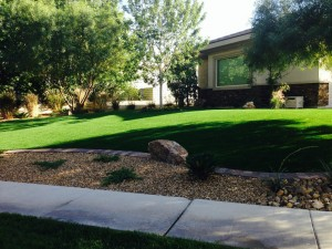 Best and most affordable Las Vegas landscaping tips and ideas