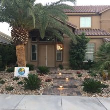 Southern Nevada Landscaping Rebate Saves You Big