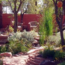 Fall Is Perfect Time to Plant, Design Las Vegas Landscaping