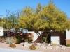 Las Vegas, landscaping, tropical landscape,
