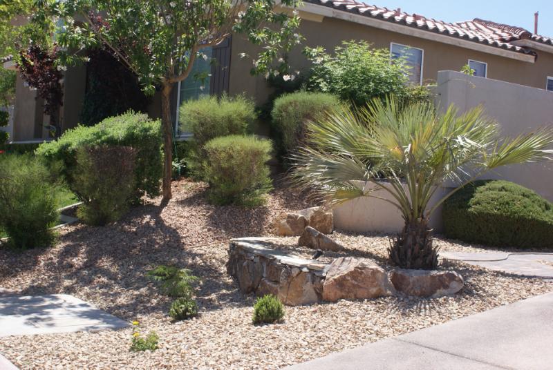 Las Vegas homes landscapes