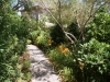 henderson plants and landscapes
