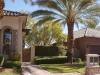 Landscaping in las Vegas beauty
